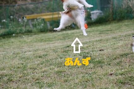 b201105073.jpg