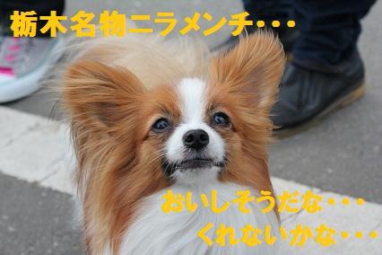 b201105099.jpg