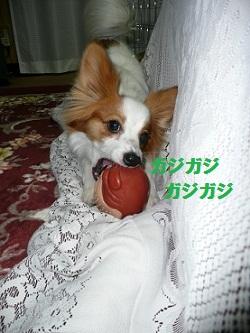 b201105124.jpg