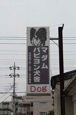 b201106081.jpg