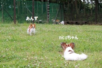 b201106131.jpg
