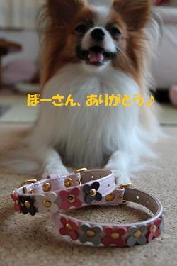 b201107155.jpg