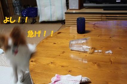 b201108039.jpg