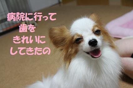 b201109141.jpg