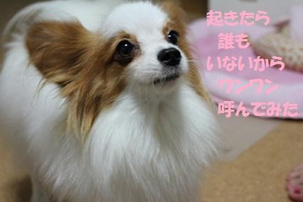 b201109143.jpg