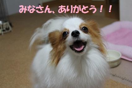 b201109146.jpg