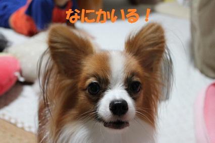b201109272.jpg