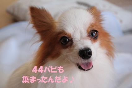 b201110102.jpg