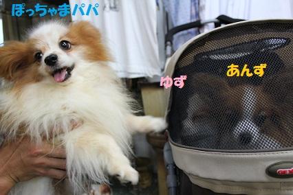 b2011101511.jpg
