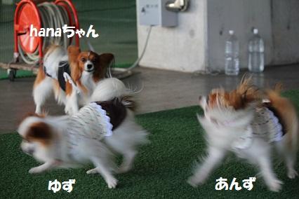 b201110278.jpg