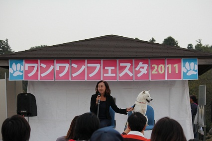b201111083.jpg