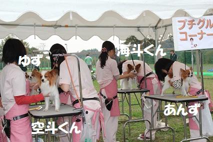 b201111088.jpg
