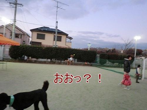 CIMG5658.jpg