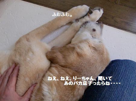 CIMG5761.jpg