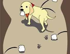 100422 犬1