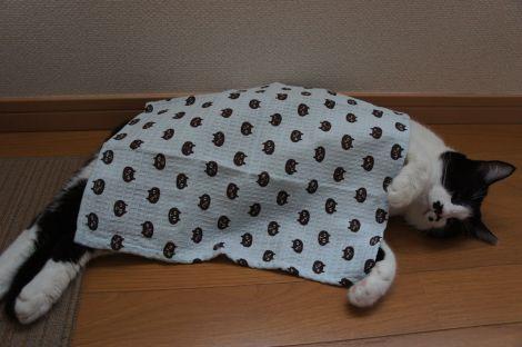 ねこまんじゅうの布巾