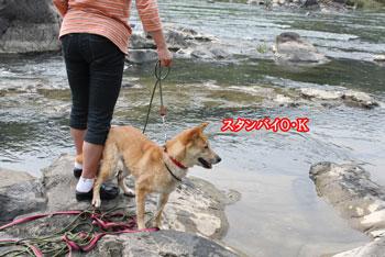 2011_0604_スタンバイ