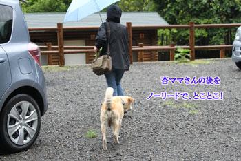 2011_0605_杏ママさんの後