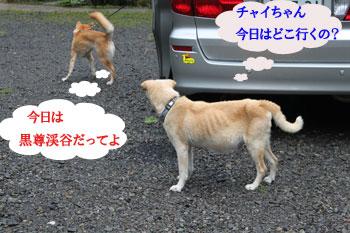 2011_0605_おでかけ