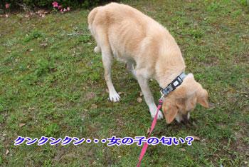 2011_0610_青
