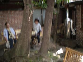 2011_0709_裏庭