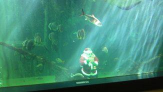 箱根園水族館2