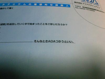 SBCA0054_20101129000700.jpg