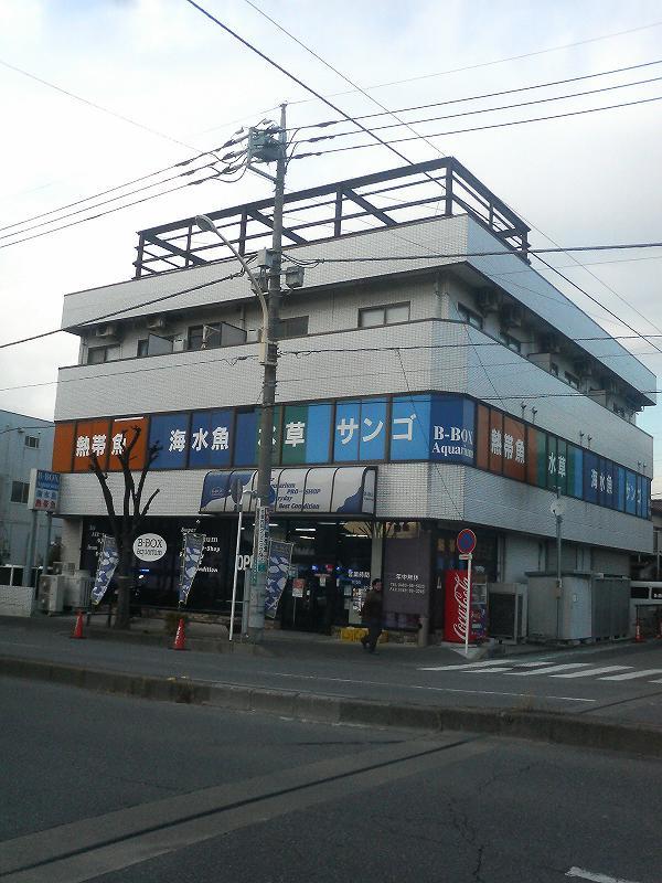 100124ビーボックスアクアリウム越谷店