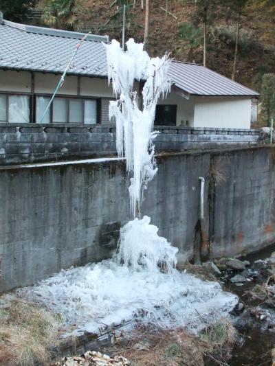 小川の氷柱