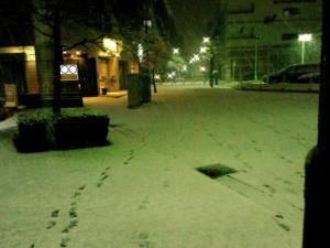 2010初雪景色100010002.jpg
