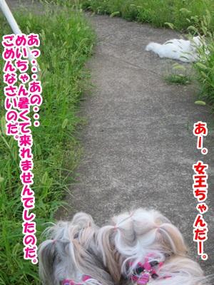 2013-08-21-03.jpg
