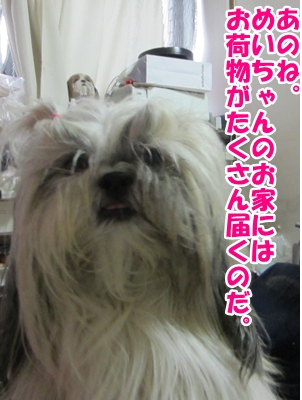 2013-09-10-01.jpg