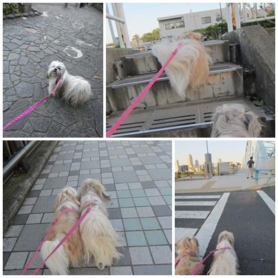 2013-09-20-04.jpg