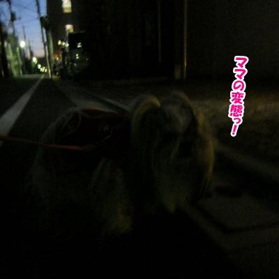2013-12-14-01.jpg