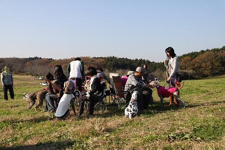 2010'zrppy weima xmas partty in 森のまきば 094