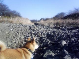 初めての道(川)
