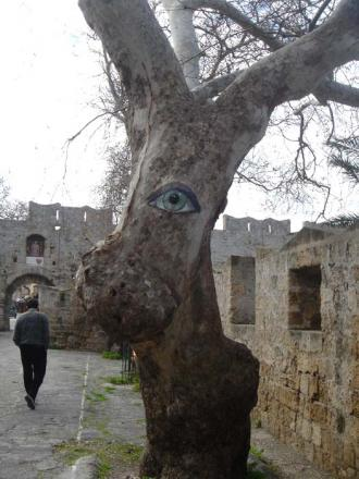 2011,2,21 木に目を書いて動物に・・・