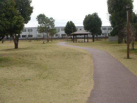 2011,3,21 散歩道