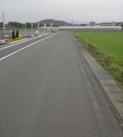 2011,3,21 農道