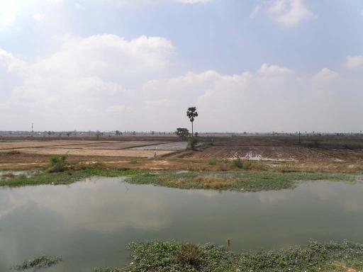 2010-01_カンボジア_3-02
