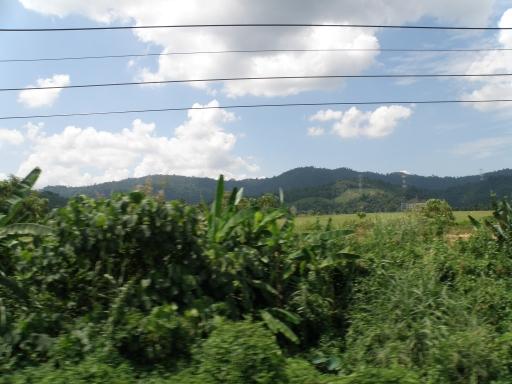 20100417_006