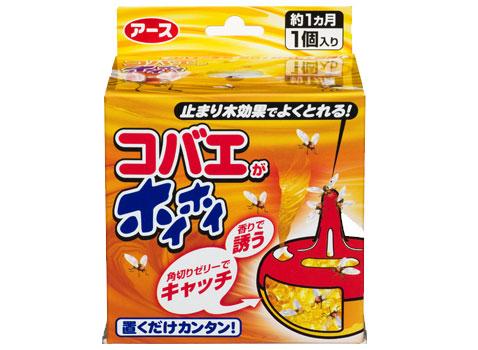 kobae_hoihoi_img_001.jpg
