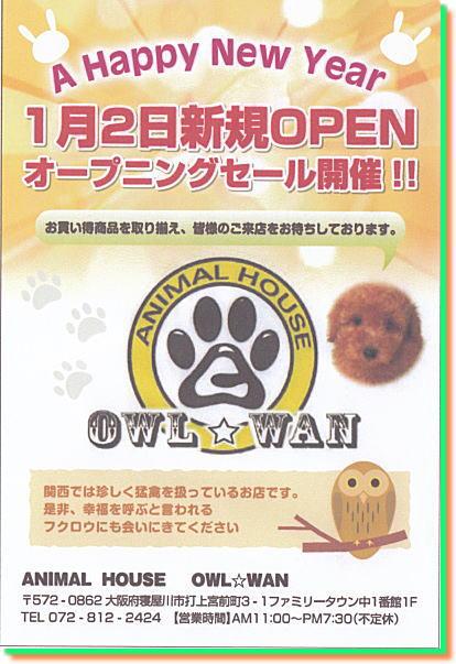 open001.jpg