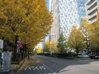 IMG_0682新宿風景