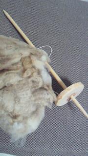 2010・5・29松本クラフトフェア 刈りたて羊毛とスピンドル