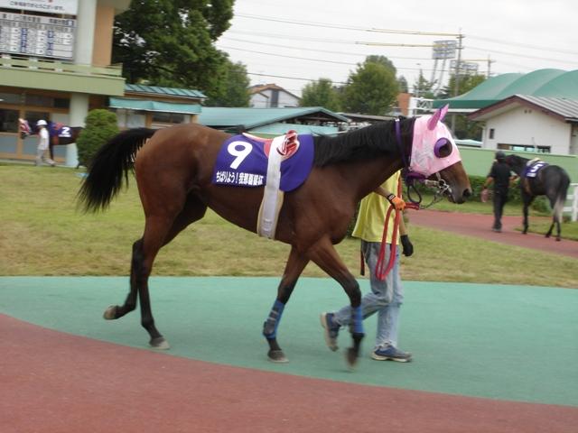 パッションフルーツ(10/10/08:名古屋競馬場)