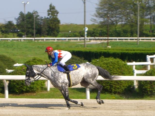 エイシンインパール(笠松):返し馬