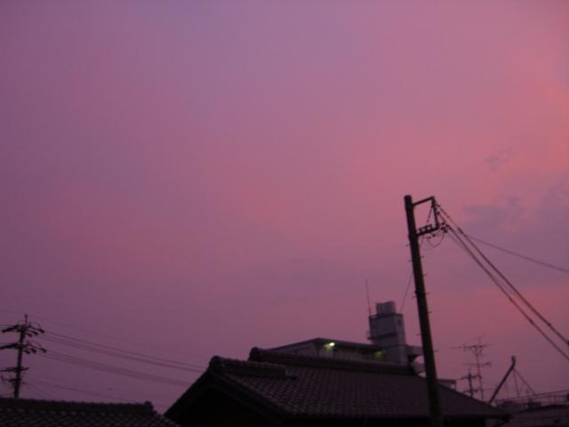 Purple Cloud 2010