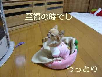 blog2011120604.jpg