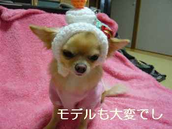 blog2011120801.jpg
